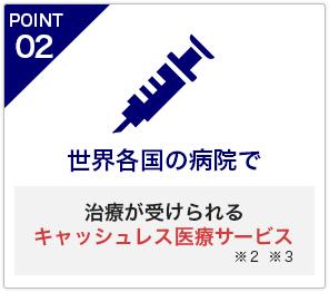 Chubb損害保険株式会社 海外旅行保険 JAL保険ナビ